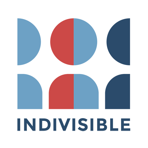 Connect to Indivisible